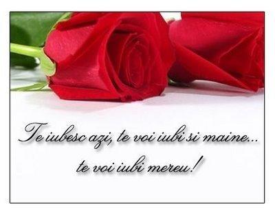 """... frumoase declaratii de dragoste - Mesaje frumoase cu """"Te iubesc"""