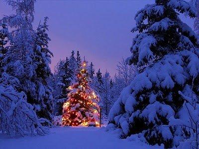 Cele mai frumoase imagini de sarbatori – Wallpaper de iarna pentru ...