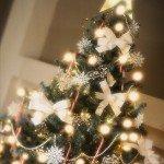 felicitare_sarbatori_de_iarna_89_L