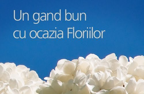 felicitari-de-florii6