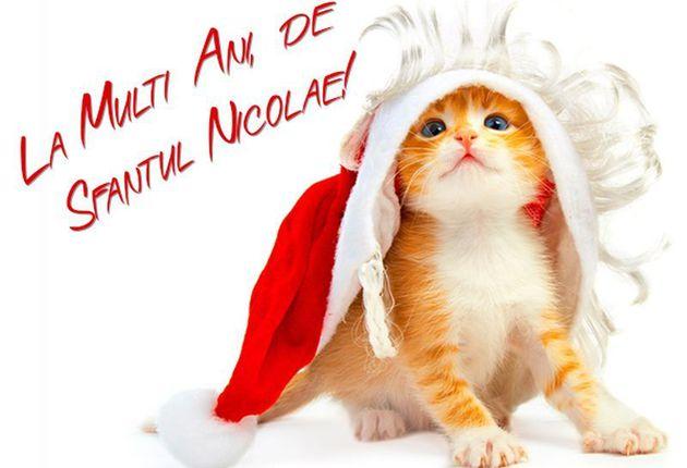 felicitari onomastica nicolae