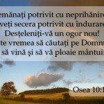 felicitari incurajare din biblie2