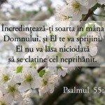 felicitari incurajare din biblie2014