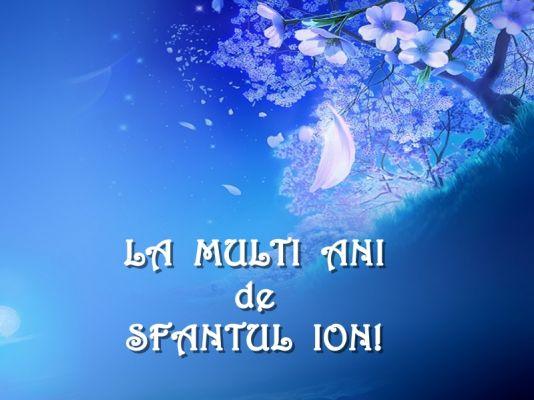 Mesaje Sf Ioan, urari sf ion, felicitari sf ioan botezatorul099