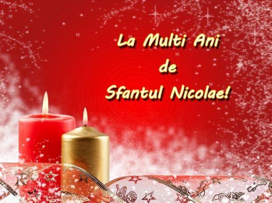 Catalin Nicolae Net Worth
