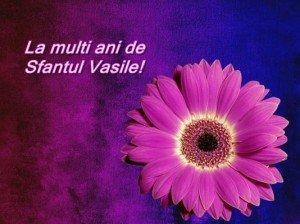 La mulți ani, Vasile! Felicitari noi de Sfantul Vasile 2015