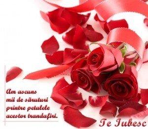 La multi ani, Valentin/Valentina – Felicitari si urari de Sf. Valentin