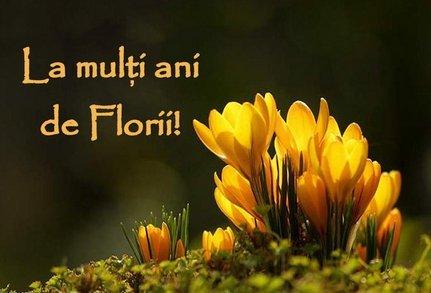 felicitari florii