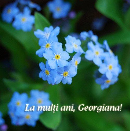 felicitari sf gheorghe4