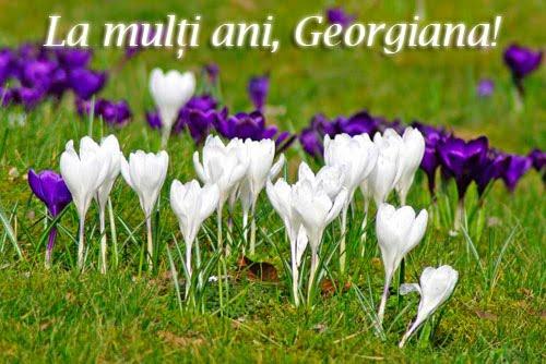 felicitari sf gheorghe8