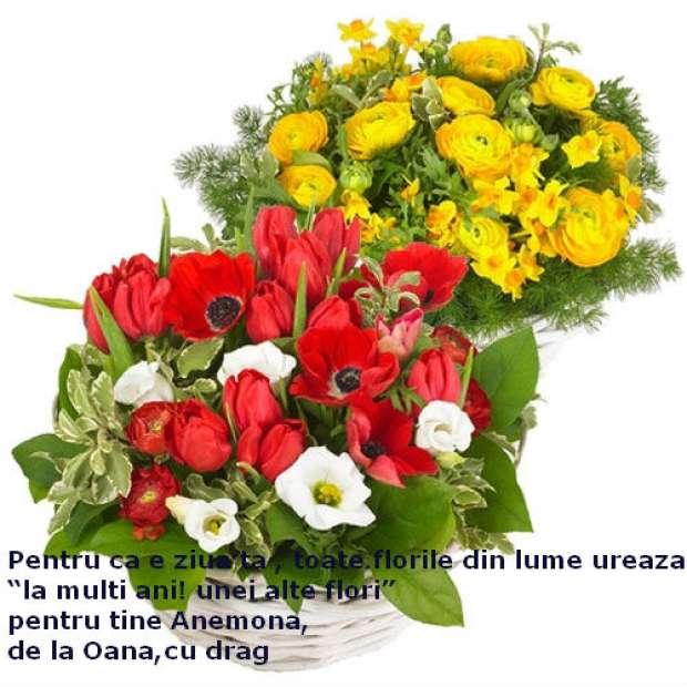 felicitari-de-florii1