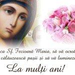 felicitari sf maria