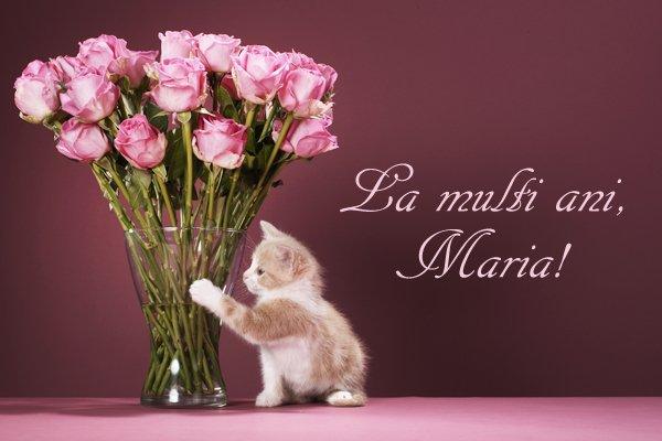 felicitari sf maria9